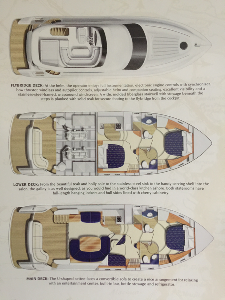 50' Viking Yachts floor plan Viking Sport Cruiser